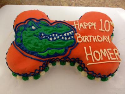 University of Florida dog birthday cake