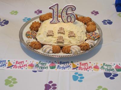 birthday party dog