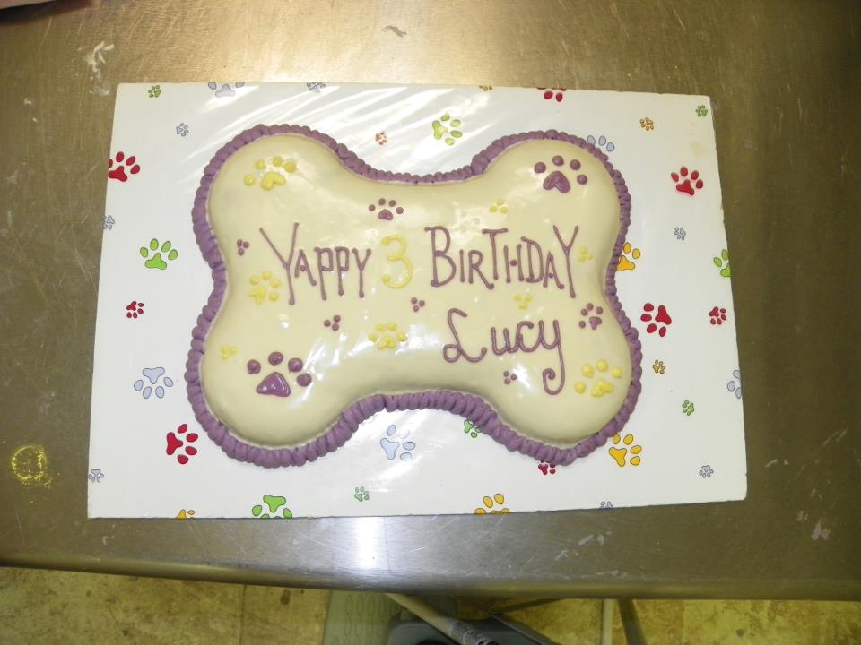 dog birthday cake with Fido's Frosting